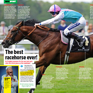 Frankel the Wonder Horse